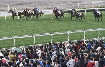 ​Hainan to embrace horse racing without supporting gambling