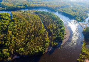 Chinas rural policy bank supports forestry sector with loans