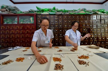 China to boost development of traditional Chinese medicine