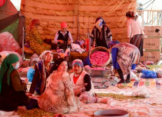 Xinjiang injects 13 bln yuan into poverty alleviation projects