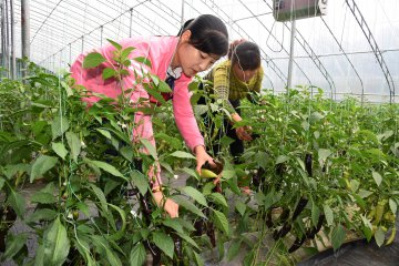 China launches campaign to train scientifically-literate farmers