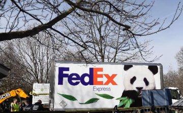 China to investigate FedEx