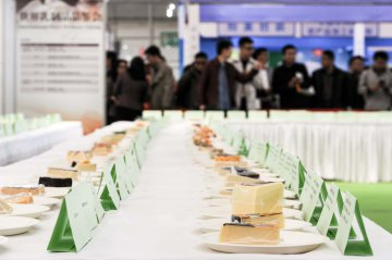 China fermenting big cheese market