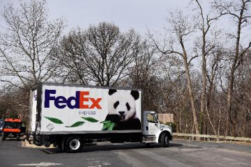 China launches investigation into FedEx