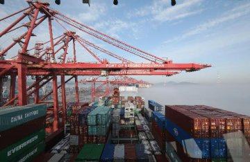 Chinas busiest port sees 5.5 pct cargo throughput growth in H1