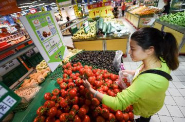 Chinas consumer inflation to remain mild in H2: analysts