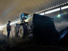 China Sept. coal, lignite exports at 440,000 tonnes, GAC