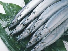 Chinas import of frozen fish in August 2014