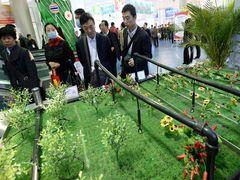 BOCOM: China Oct. CPI growth estimated at 1.4 pct on yr