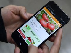 Chinas mobile phone shipment hits 363 mln units in Jan.-Oct., down 24.4 pct on yr